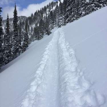 Fun&Snow Ski Guiding - Powder Tracking